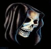 Skull 011 thumb-001